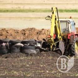 Палять шини в Куликівці. Разом з чотирма тисячами свиней