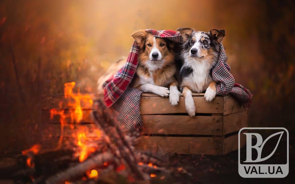 Жовтень завершиться в Україні теплою погодою